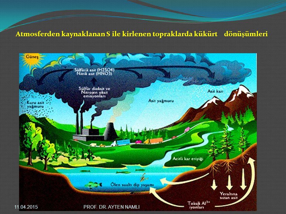 Atmosferden kaynaklanan S ile kirlenen topraklarda kükürt dönüşümleri 11.04.2015PROF. DR. AYTEN NAMLI
