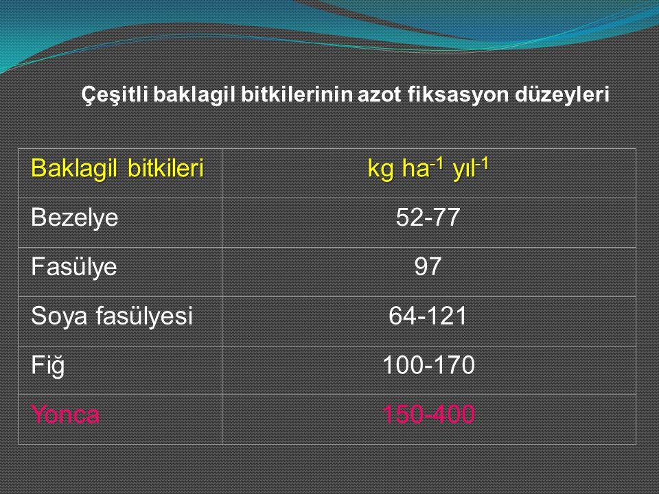 Çeşitli baklagil bitkilerinin azot fiksasyon düzeyleri Baklagil bitkileri kg ha -1 yıl -1 Bezelye52-77 Fasülye97 Soya fasülyesi64-121 Fiğ100-170 Yonca150-400