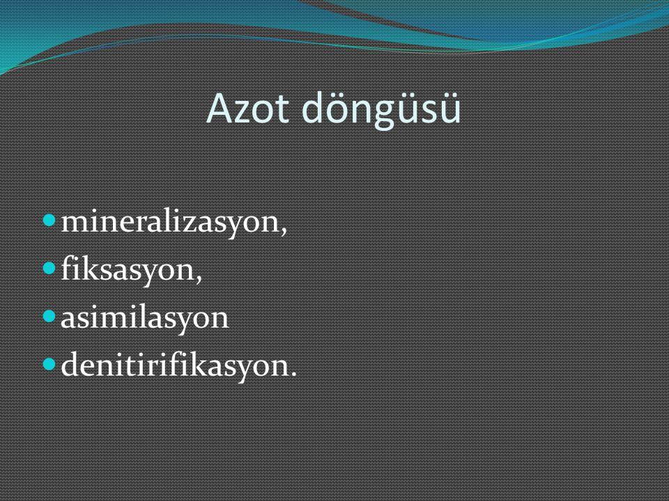Azot döngüsü mineralizasyon, fiksasyon, asimilasyon denitirifikasyon.