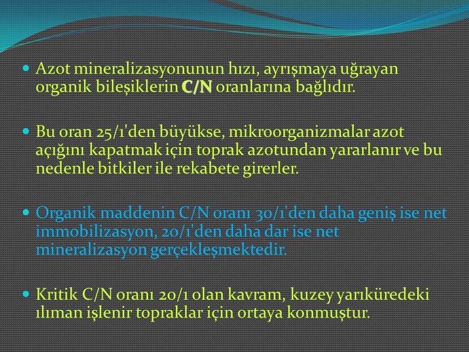 C/N Azot mineralizasyonunun hızı, ayrışmaya uğrayan organik bileşiklerin C/N oranlarına bağlıdır. Bu oran 25/1'den büyükse, mikroorganizmalar azot açı