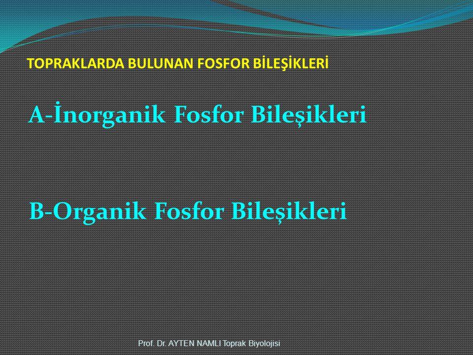 TOPRAKLARDA BULUNAN FOSFOR BİLEŞİKLERİ A-İnorganik Fosfor Bileşikleri B-Organik Fosfor Bileşikleri Prof. Dr. AYTEN NAMLI Toprak Biyolojisi