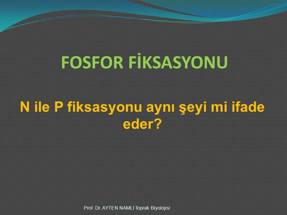 FOSFOR FİKSASYONU Prof. Dr. AYTEN NAMLI Toprak Biyolojisi N ile P fiksasyonu aynı şeyi mi ifade eder?