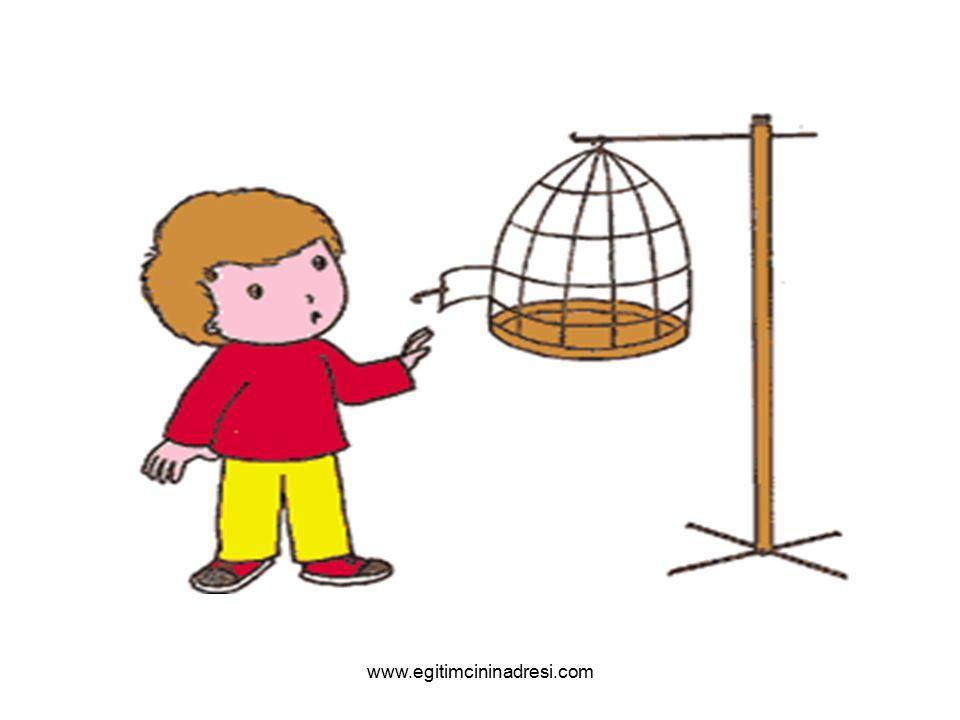 Acaba kuşum saklandı mı? Ama kuşum beni sever. Neden benden saklansın ki? www.egitimcininadresi.com