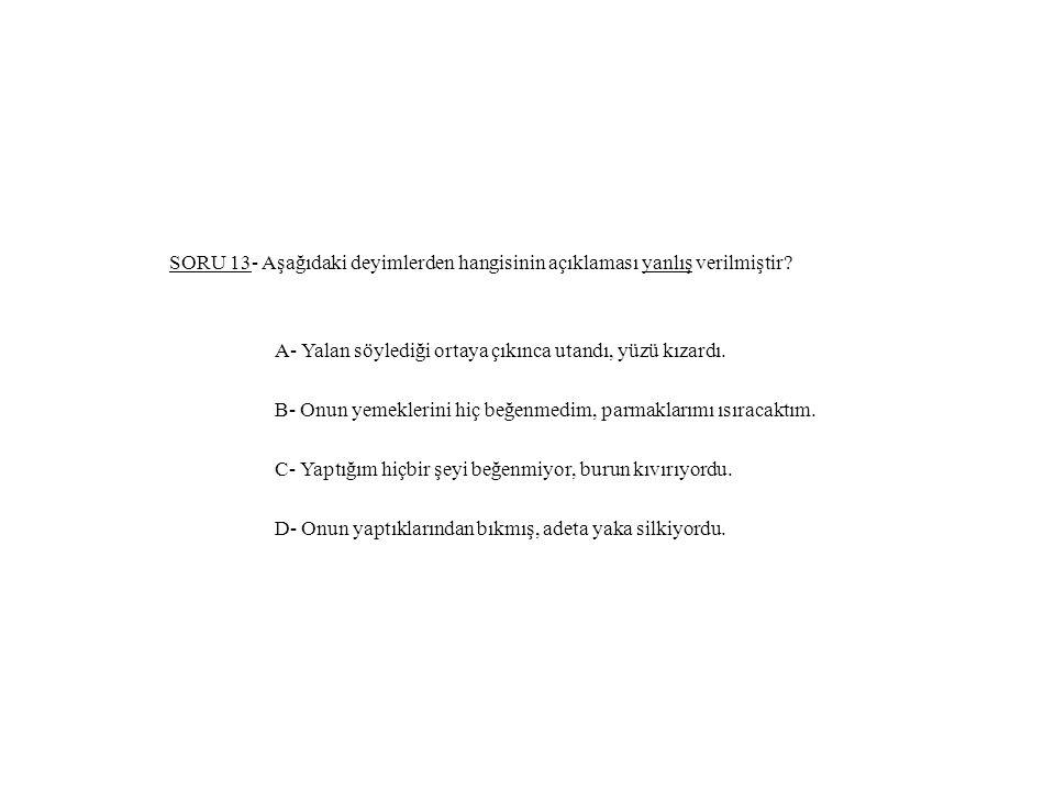 SORU 13- Aşağıdaki deyimlerden hangisinin açıklaması yanlış verilmiştir.