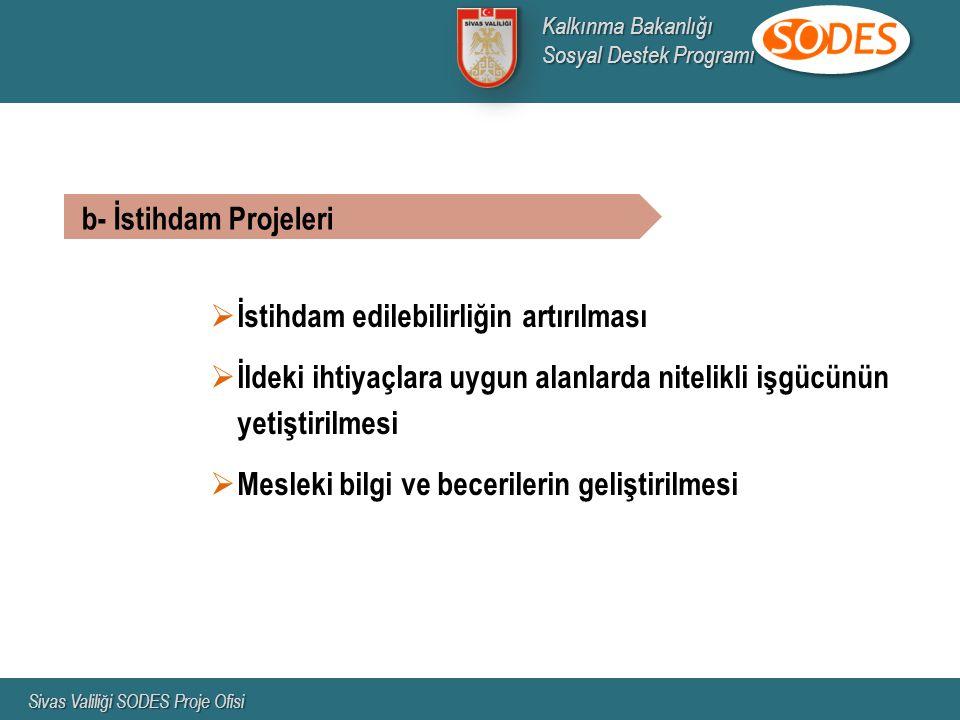 b- İstihdam Projeleri  İstihdam edilebilirliğin artırılması  İldeki ihtiyaçlara uygun alanlarda nitelikli işgücünün yetiştirilmesi  Mesleki bilgi ve becerilerin geliştirilmesi