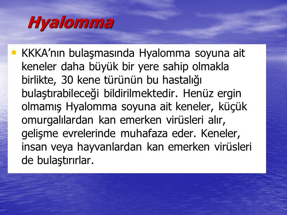 Hyalomma Hyalomma KKKA'nın bulaşmasında Hyalomma soyuna ait keneler daha büyük bir yere sahip olmakla birlikte, 30 kene türünün bu hastalığı bulaştıra