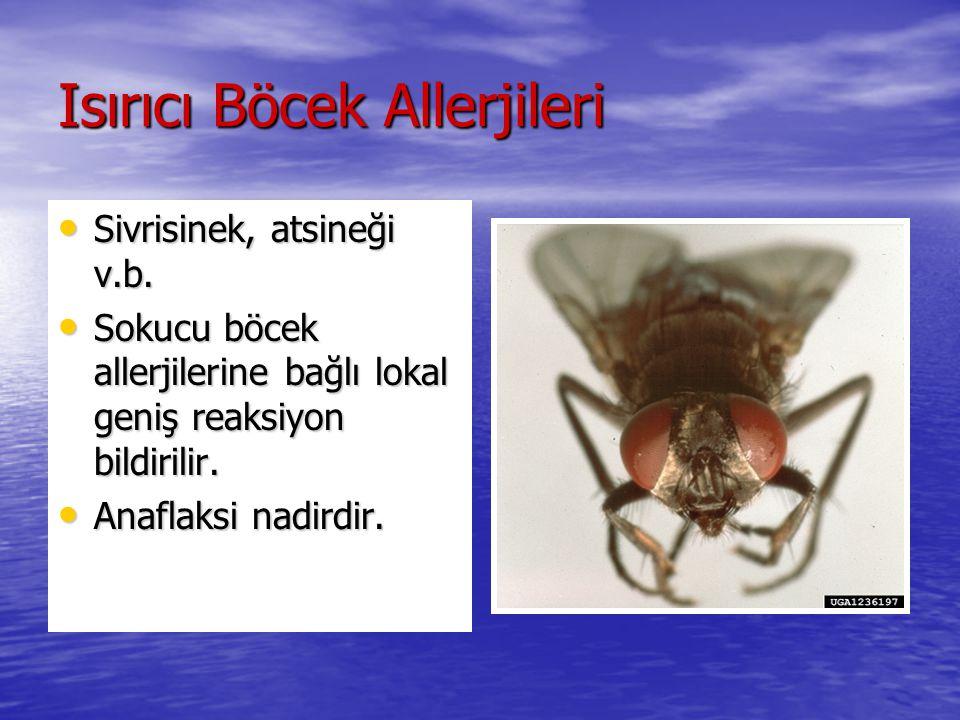 Isırıcı Böcek Allerjileri Sivrisinek, atsineği v.b. Sivrisinek, atsineği v.b. Sokucu böcek allerjilerine bağlı lokal geniş reaksiyon bildirilir. Sokuc