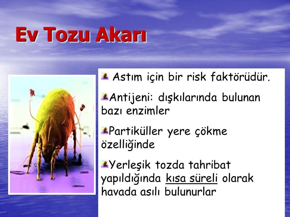 Ankara Izmir Adana Bursa Istanbul Ankara Izmir Antalya Bursa Istanbul *Pediatrik grup %23.5-43 %9.5-15* %49 % 35.2 %12-21- Türkiye'de Astım ve/veya Rinitli Olgularda Hamamböceği Allerjisi Dağılımı Mungan D ve ark.