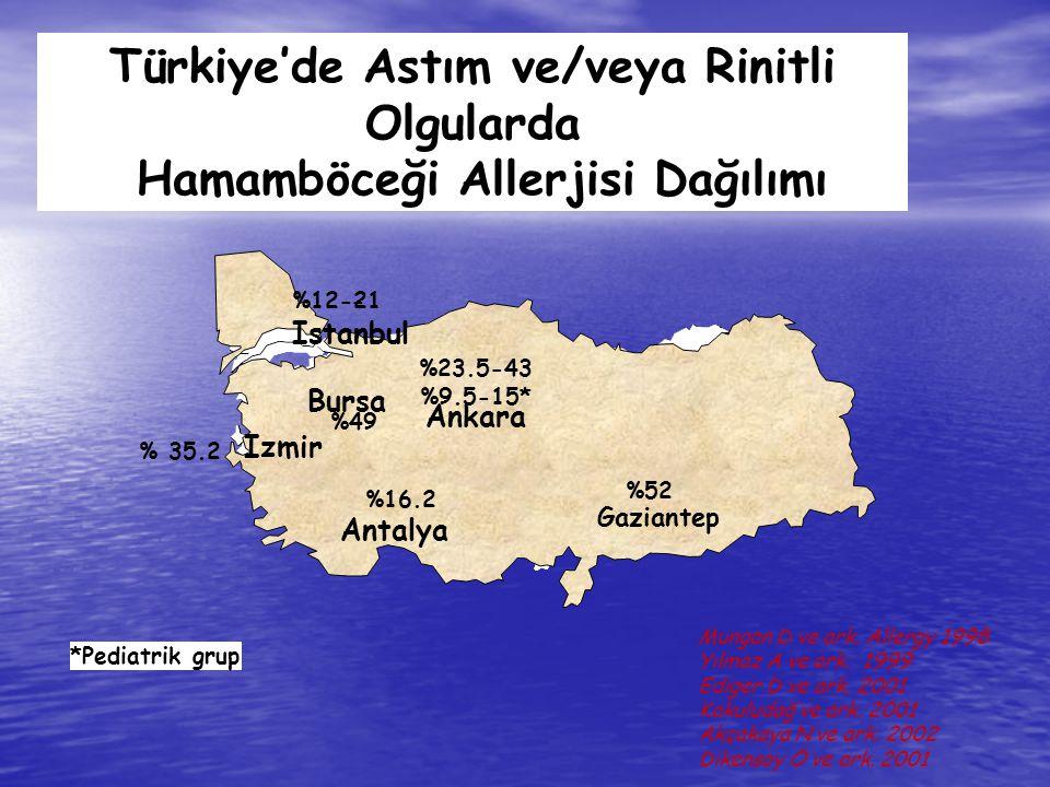 Ankara Izmir Adana Bursa Istanbul Ankara Izmir Antalya Bursa Istanbul *Pediatrik grup %23.5-43 %9.5-15* %49 % 35.2 %12-21- Türkiye'de Astım ve/veya Ri