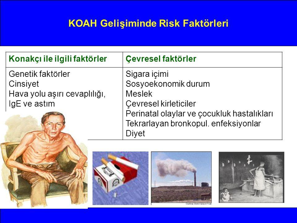 Konakçı ile ilgili faktörlerÇevresel faktörler Genetik faktörler Cinsiyet Hava yolu aşırı cevaplılığı, IgE ve astım Sigara içimi Sosyoekonomik durum M