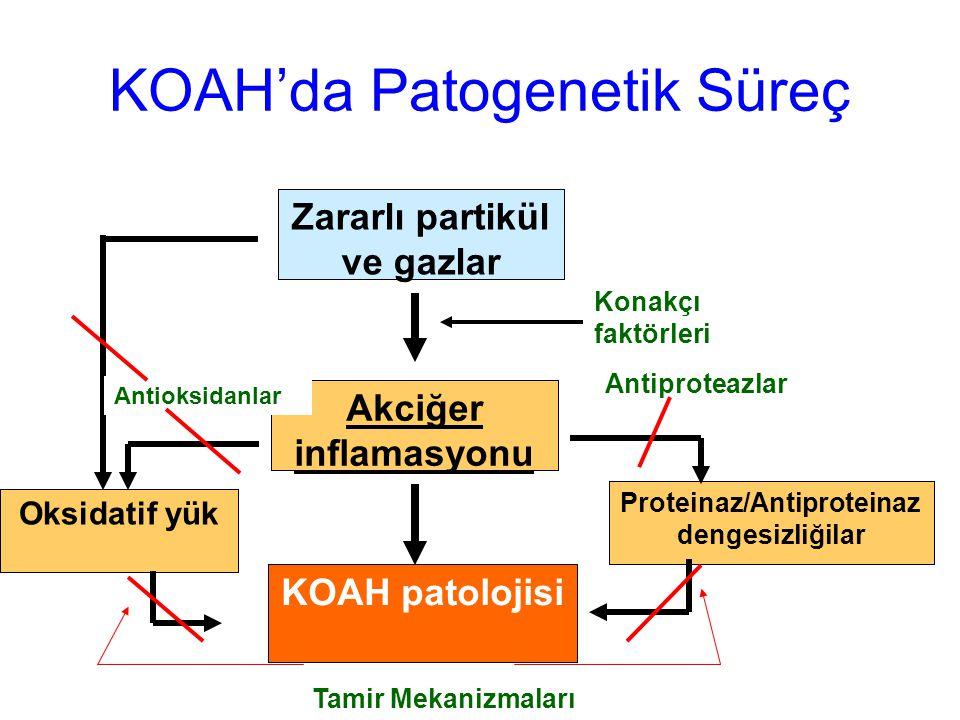 Zararlı partikül ve gazlar Akciğer inflamasyonu KOAH patolojisi Konakçı faktörleri Proteinaz/Antiproteinaz dengesizliğilar Oksidatif yük Antioksidanla