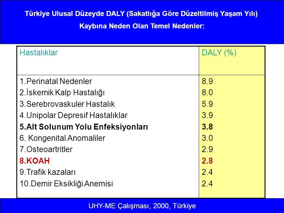Türkiye Ulusal Düzeyde DALY (Sakatlığa Göre Düzeltilmiş Yaşam Yılı) Kaybına Neden Olan Temel Nedenler: HastalıklarDALY (%) 1.Perinatal Nedenler 2.İske