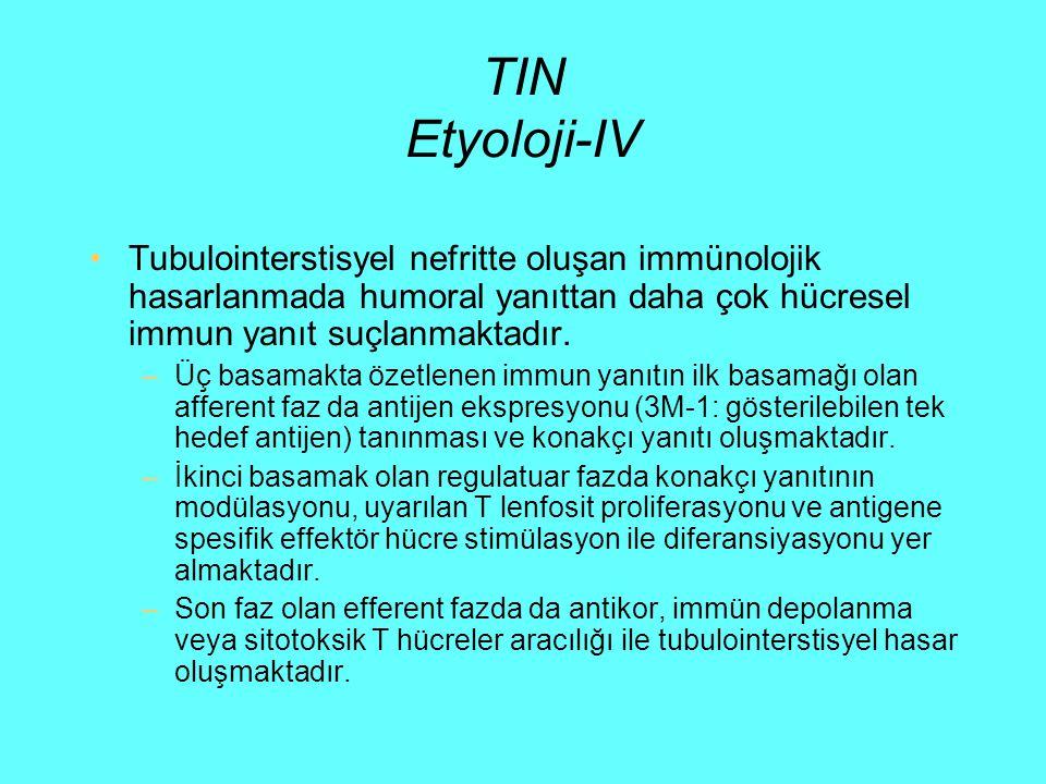 TIN Etyoloji-IV Tubulointerstisyel nefritte oluşan immünolojik hasarlanmada humoral yanıttan daha çok hücresel immun yanıt suçlanmaktadır. –Üç basamak