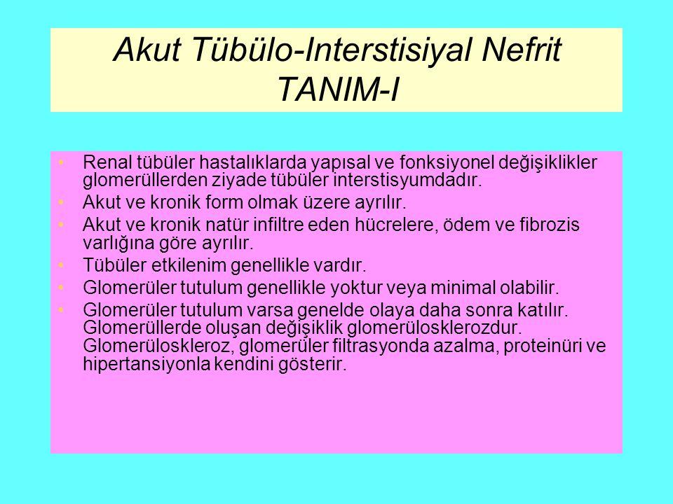 Akut Tübülo-Interstisiyal Nefrit TANIM-I Renal tübüler hastalıklarda yapısal ve fonksiyonel değişiklikler glomerüllerden ziyade tübüler interstisyumda