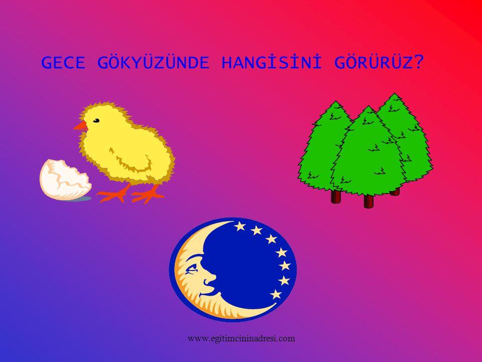 GECE GÖKYÜZÜNDE HANGİSİNİ GÖRÜRÜZ? www.egitimcininadresi.com