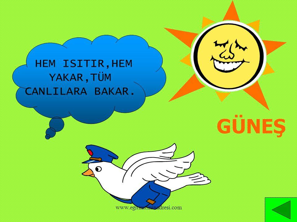 GÜNEŞ HEM ISITIR,HEM YAKAR,TÜM CANLILARA BAKAR. www.egitimcininadresi.com