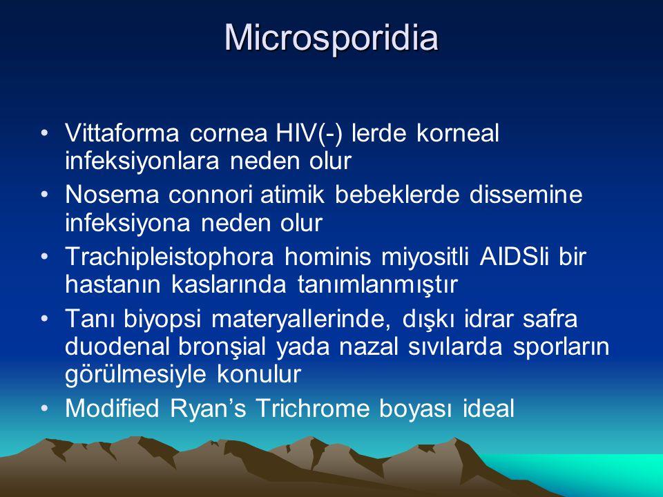Microsporidia Vittaforma cornea HIV(-) lerde korneal infeksiyonlara neden olur Nosema connori atimik bebeklerde dissemine infeksiyona neden olur Trach