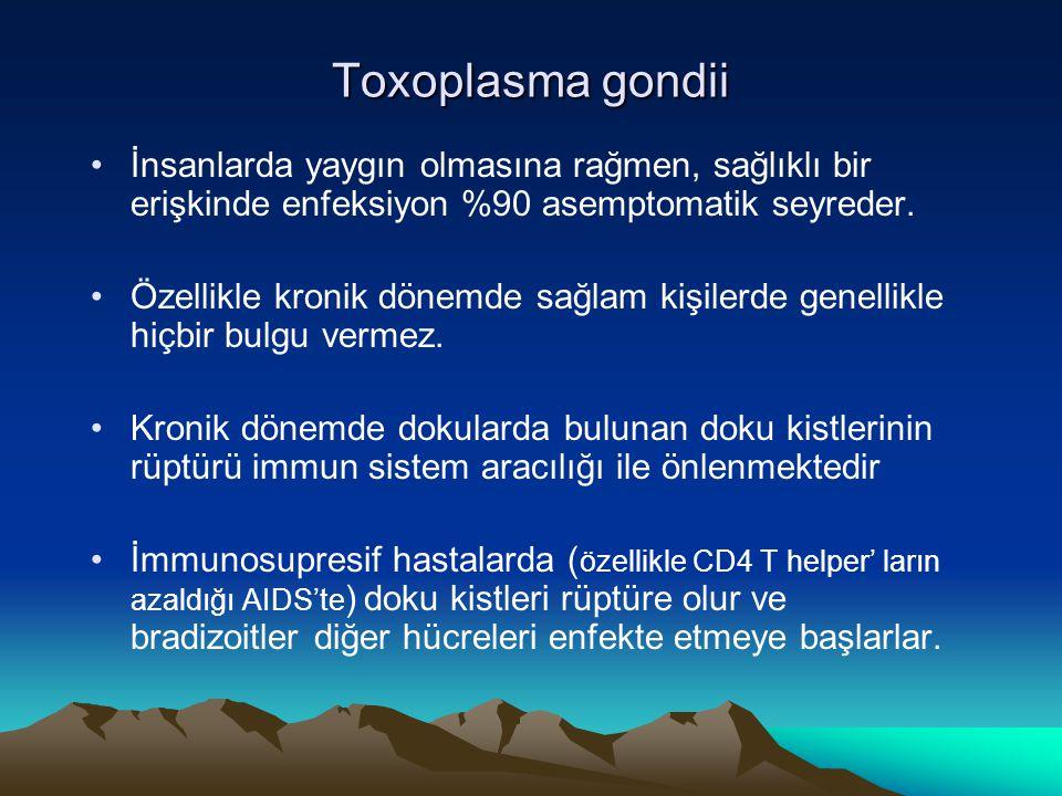 Toxoplasma gondii İnsanlarda yaygın olmasına rağmen, sağlıklı bir erişkinde enfeksiyon %90 asemptomatik seyreder. Özellikle kronik dönemde sağlam kişi