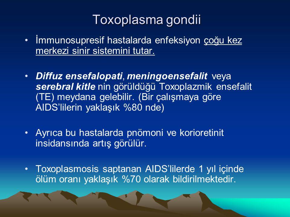 Toxoplasma gondii Toxoplasma gondii İmmunosupresif hastalarda enfeksiyon çoğu kez merkezi sinir sistemini tutar. Diffuz ensefalopati, meningoensefalit