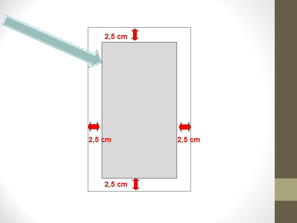 2,5 cm
