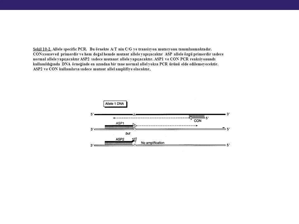 Şekil 10-2. Allele specific PCR. Bu örnekte A/T nin C/G ye transisyon mutasyonu tanımlanmaktadır. CON:conseved primerdir ve hem doğal hemde mutant all