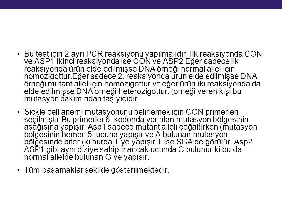 Bu test için 2 ayrı PCR reaksiyonu yapılmalıdır. İlk reaksiyonda CON ve ASP1 ikinci reaksiyonda ise CON ve ASP2 Eğer sadece ilk reaksiyonda ürün elde
