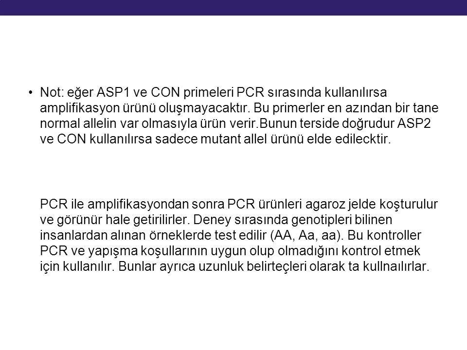 Not: eğer ASP1 ve CON primeleri PCR sırasında kullanılırsa amplifikasyon ürünü oluşmayacaktır. Bu primerler en azından bir tane normal allelin var olm