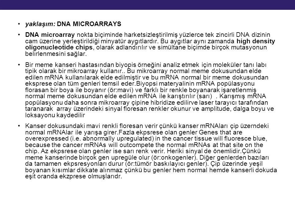 yaklaşım: DNA MICROARRAYS DNA microarray nokta biçiminde harketsizleştirilmiş yüzlerce tek zincirli DNA dizinin cam üzerine yerleştirildiği minyatür a