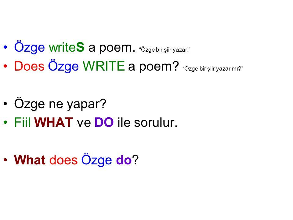 Özge writeS a poem. Özge bir şiir yazar. Does Özge WRITE a poem.