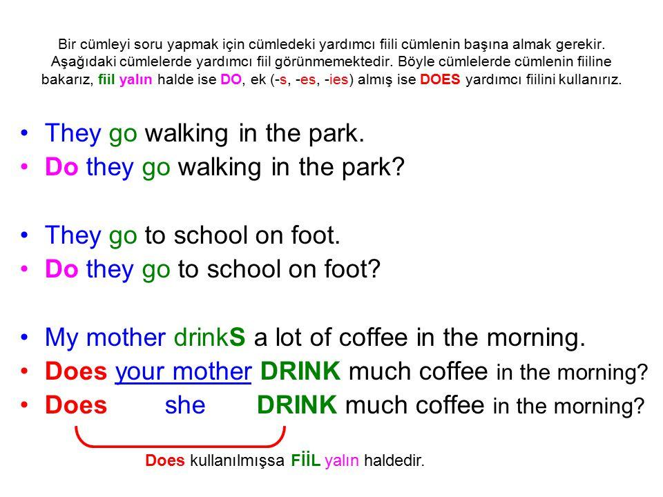 Bir cümleyi soru yapmak için cümledeki yardımcı fiili cümlenin başına almak gerekir.