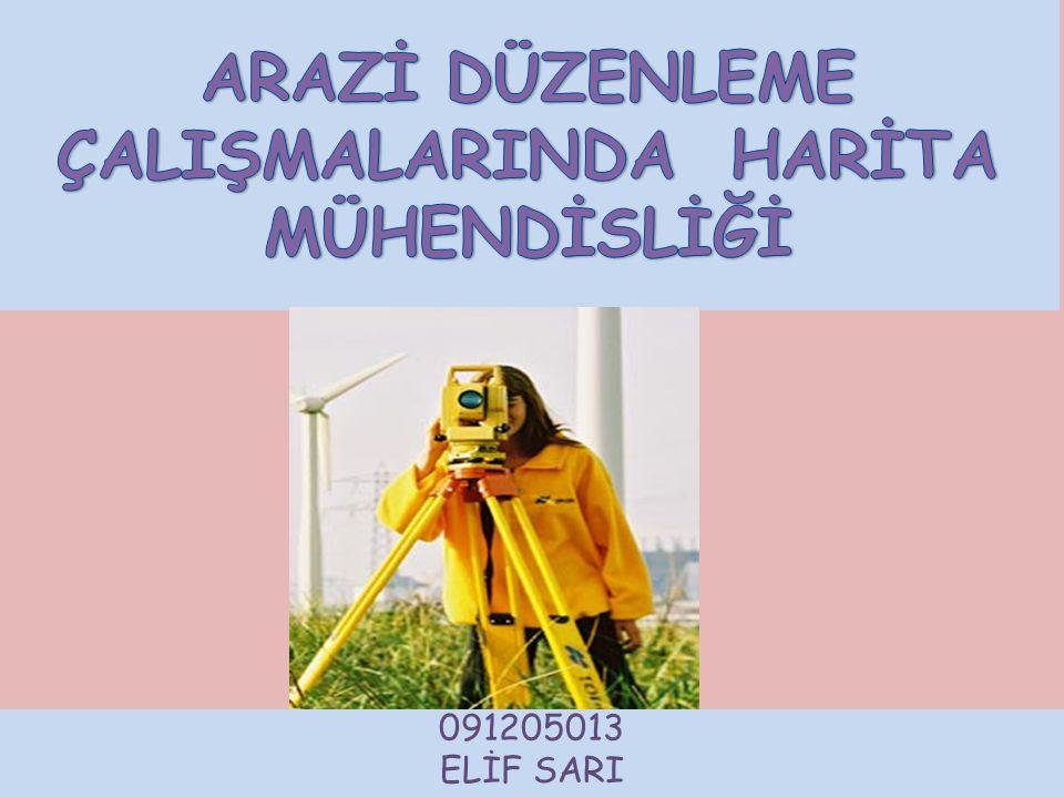 091205013 ELİF SARI