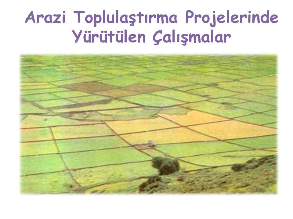 Arazi Toplulaştırma Projelerinde Yürütülen Çalışmalar