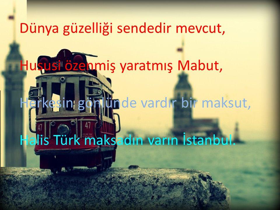 Dünya güzelliği sendedir mevcut, Hususi özenmiş yaratmış Mabut, Herkesin gönlünde vardır bir maksut, Halis Türk maksadın varın İstanbul.