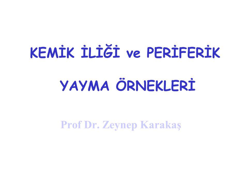 KEMİK İLİĞİ ve PERİFERİK YAYMA ÖRNEKLERİ Prof Dr. Zeynep Karakaş