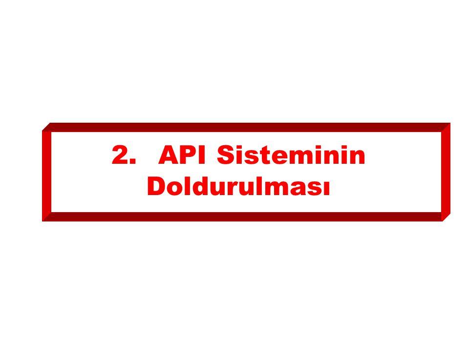 2.API Sisteminin Doldurulması