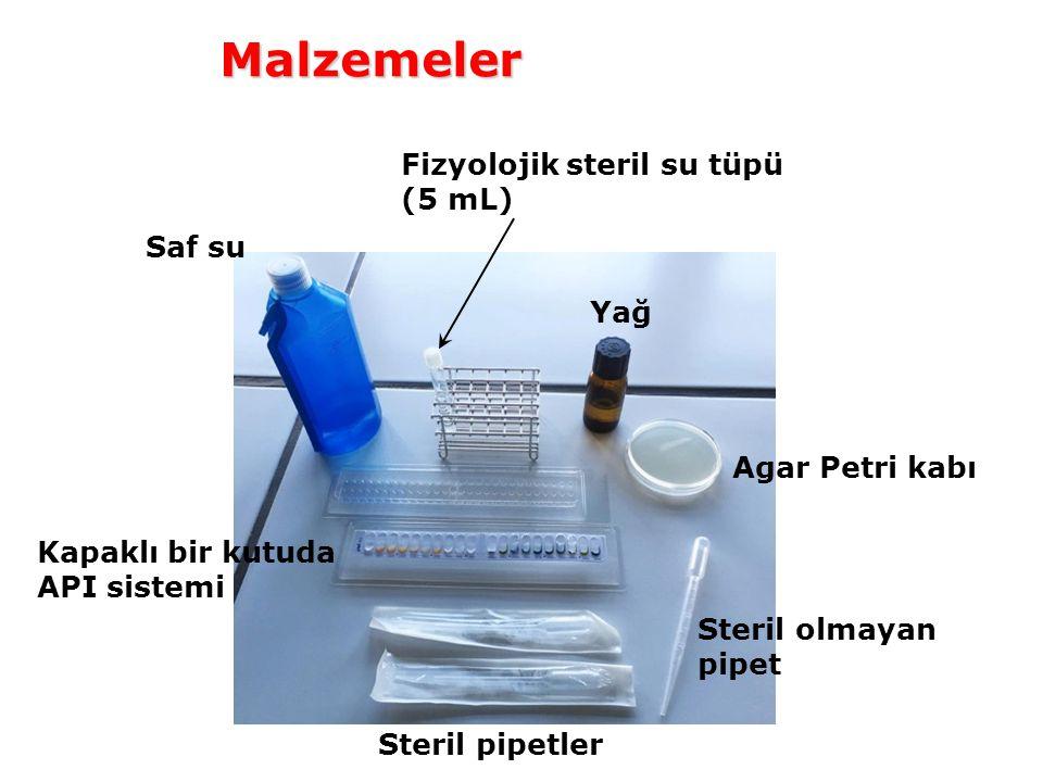 Saf su Fizyolojik steril su tüpü (5 mL) Yağ Agar Petri kabı Kapaklı bir kutuda API sistemi Steril pipetler Steril olmayan pipet Malzemeler