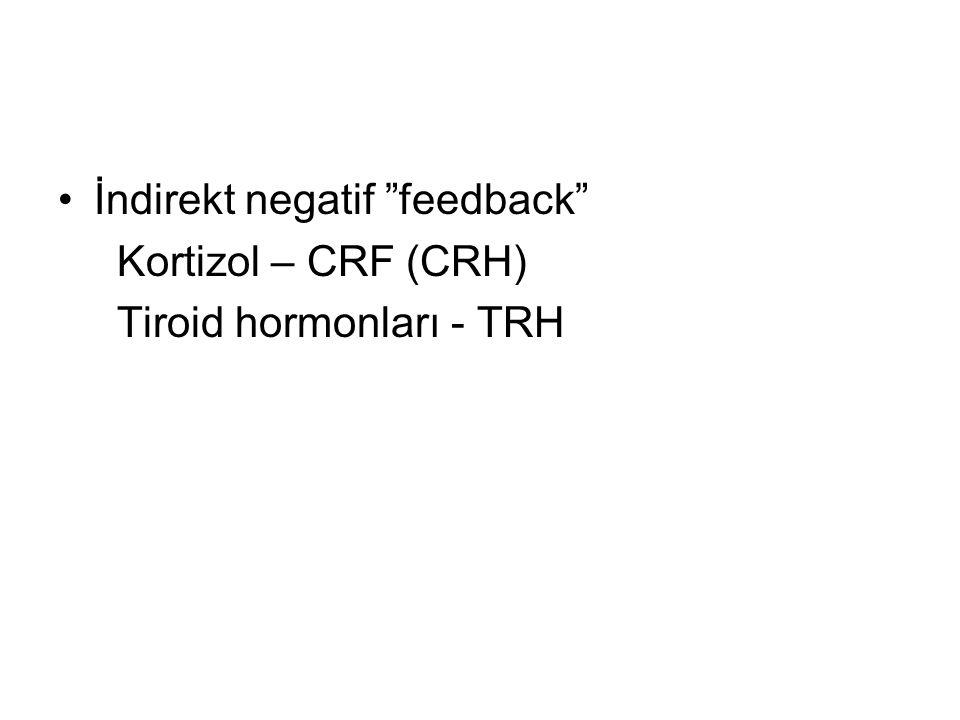 İndirekt negatif feedback Kortizol – CRF (CRH) Tiroid hormonları - TRH
