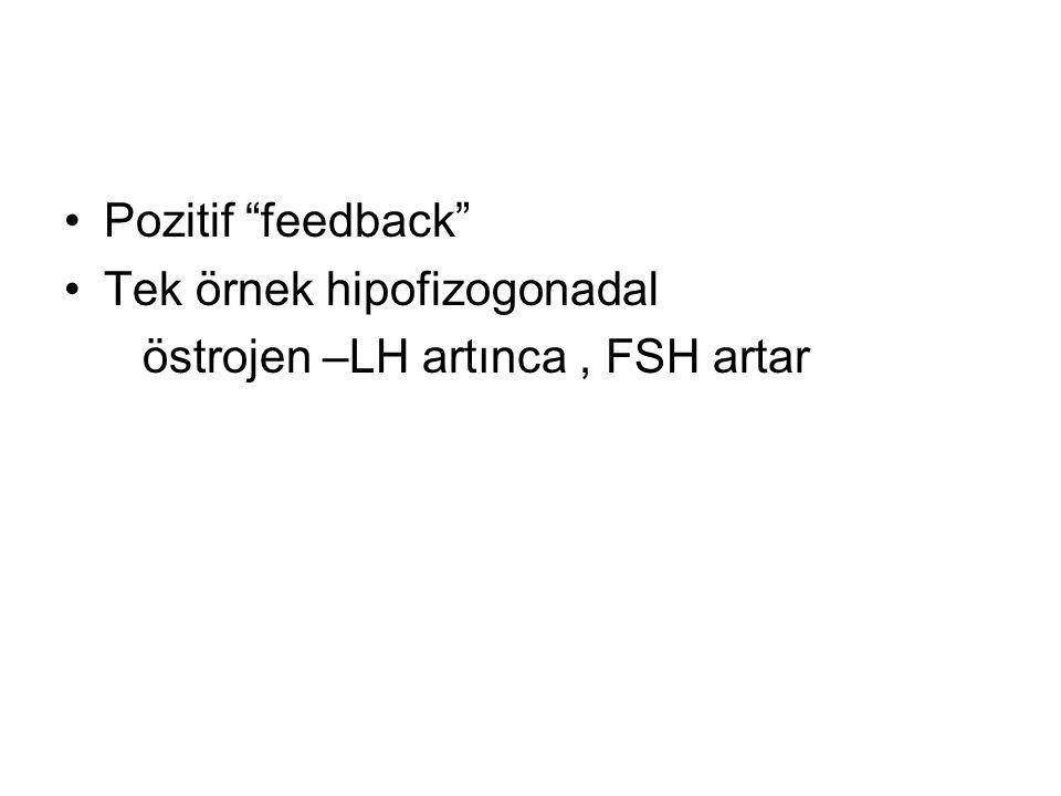 Pozitif feedback Tek örnek hipofizogonadal östrojen –LH artınca, FSH artar