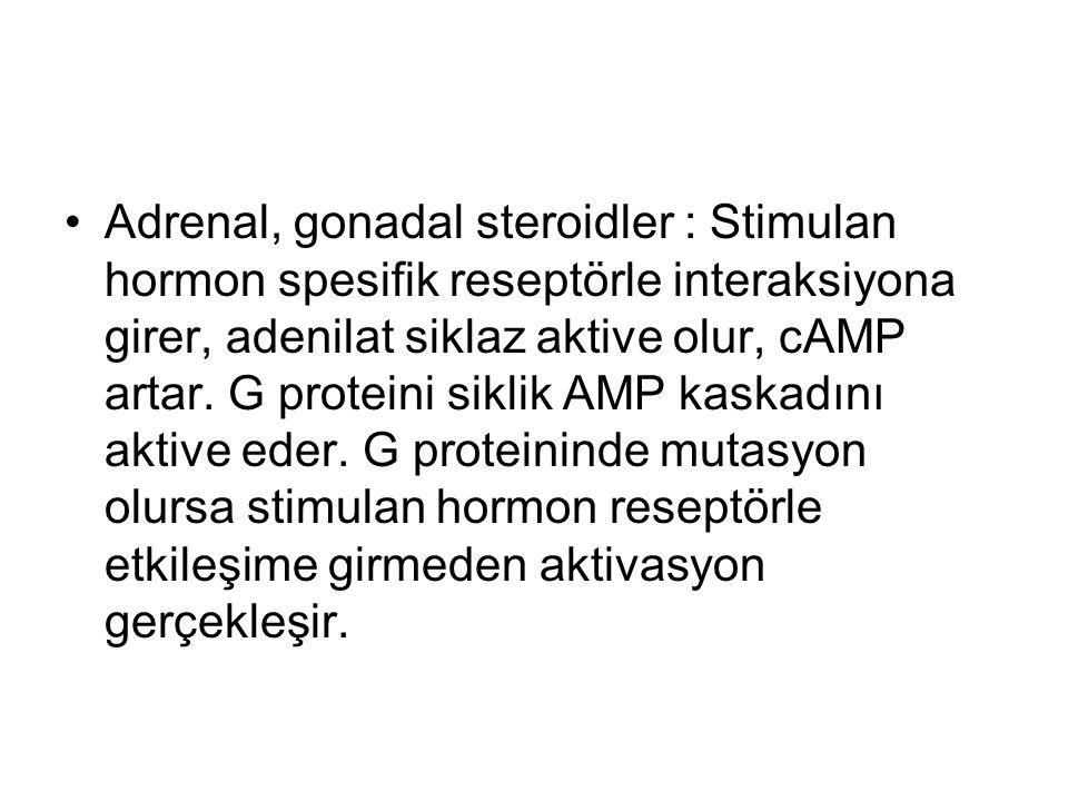 Adrenal, gonadal steroidler : Stimulan hormon spesifik reseptörle interaksiyona girer, adenilat siklaz aktive olur, cAMP artar.
