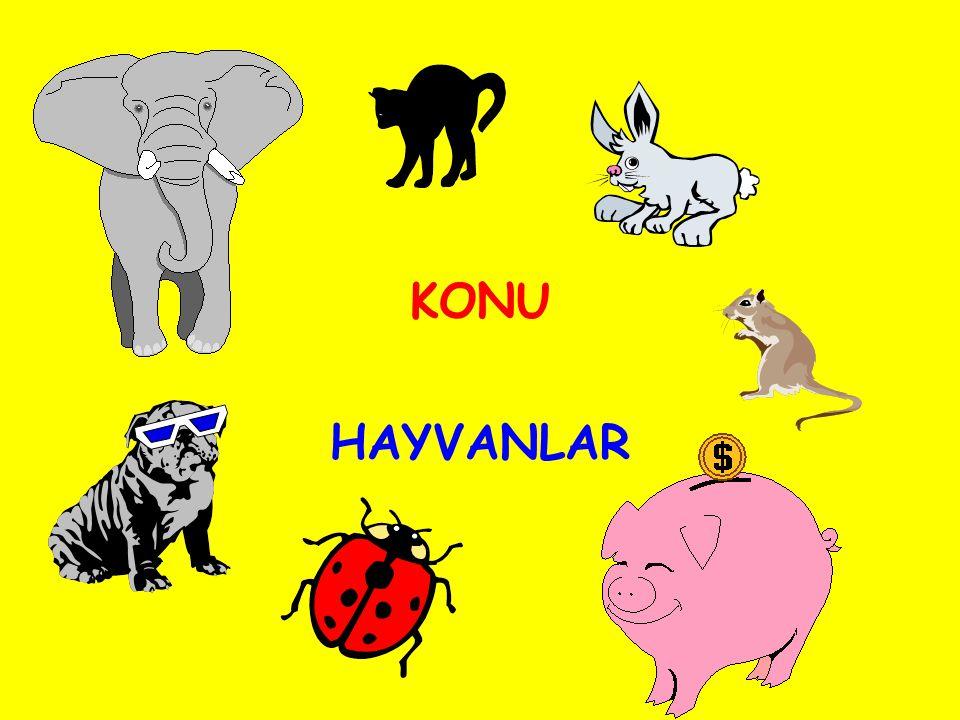 KONU HAYVANLAR