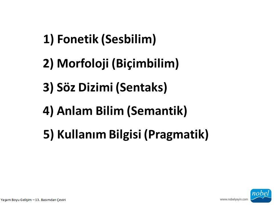 1) Fonetik (Sesbilim) 2) Morfoloji (Biçimbilim) 3) Söz Dizimi (Sentaks) 4) Anlam Bilim (Semantik) 5) Kullanım Bilgisi (Pragmatik)