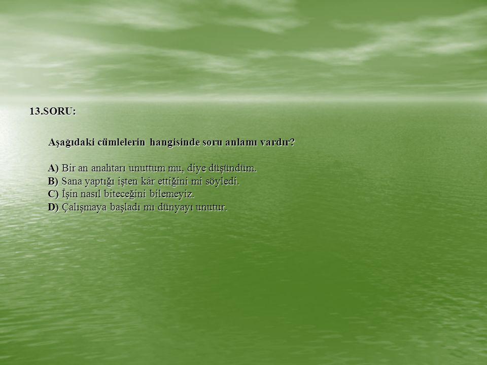 13.SORU: Aşağıdaki cümlelerin hangisinde soru anlamı vardır? A) Bir an anahtarı unuttum mu, diye düşündüm. B) Sana yaptığı işten kâr ettiğini mi söyle