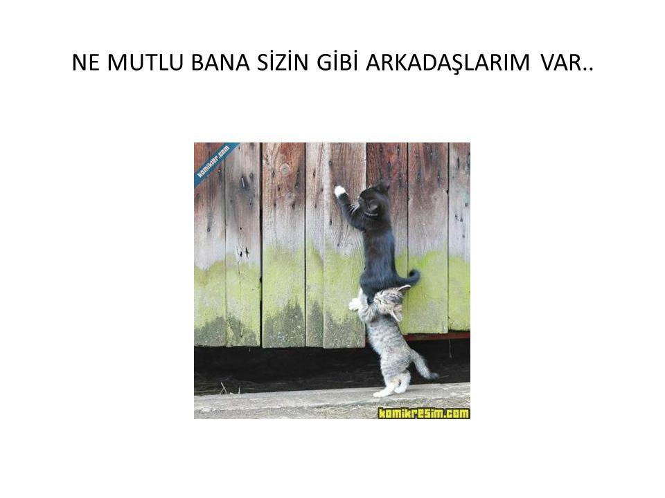 NE MUTLU BANA SİZİN GİBİ ARKADAŞLARIM VAR..