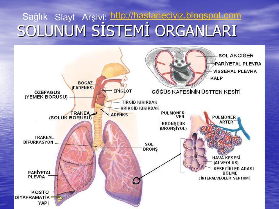 KAYNAKLAR: KAYNAKLAR: Hastalıklar Bilgisi Ders Kitabı Hastalıklar Bilgisi Ders Kitabı Semra KARADAVUT Semra KARADAVUT Seher AHRAZ Seher AHRAZ Sağlık SlaytArşivi: http://hastaneciyiz.blogspot.com