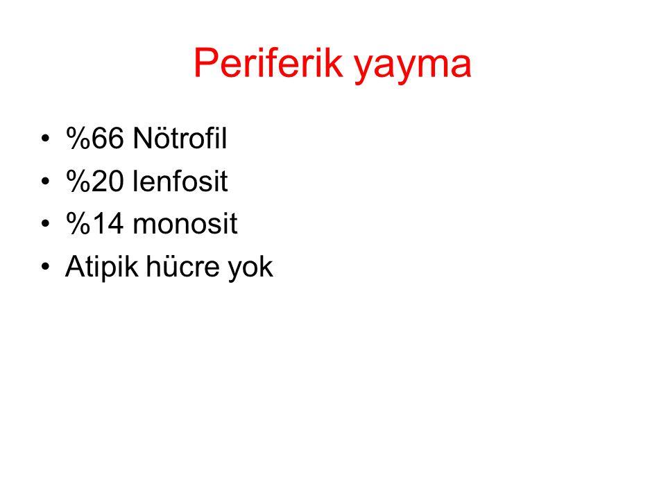 Periferik yayma %66 Nötrofil %20 lenfosit %14 monosit Atipik hücre yok