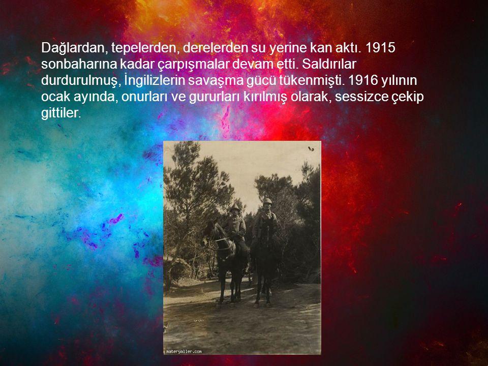 Dağlardan, tepelerden, derelerden su yerine kan aktı. 1915 sonbaharına kadar çarpışmalar devam etti. Saldırılar durdurulmuş, İngilizlerin savaşma gücü