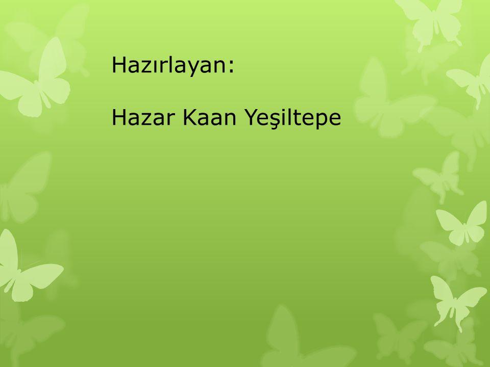 Hazırlayan: Hazar Kaan Yeşiltepe