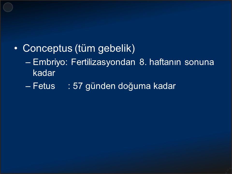 Conceptus (tüm gebelik) –Embriyo: Fertilizasyondan 8. haftanın sonuna kadar –Fetus : 57 günden doğuma kadar