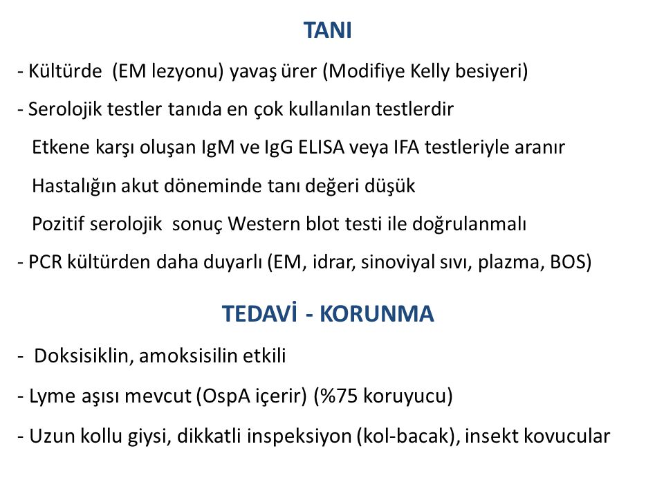 TANI - Kültürde (EM lezyonu) yavaş ürer (Modifiye Kelly besiyeri) - Serolojik testler tanıda en çok kullanılan testlerdir Etkene karşı oluşan IgM ve I