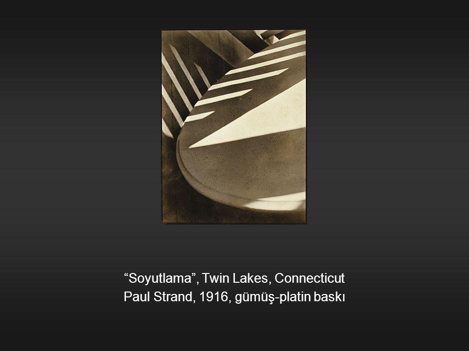 """""""Soyutlama"""", Twin Lakes, Connecticut Paul Strand, 1916, gümüş-platin baskı"""